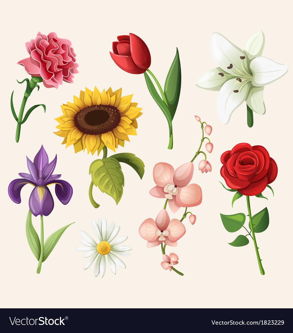 Set of romantic summer flowers vector