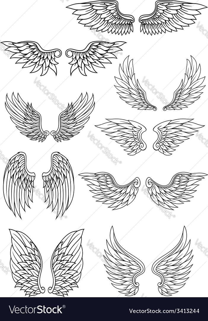 Set of outline heraldic wings vector