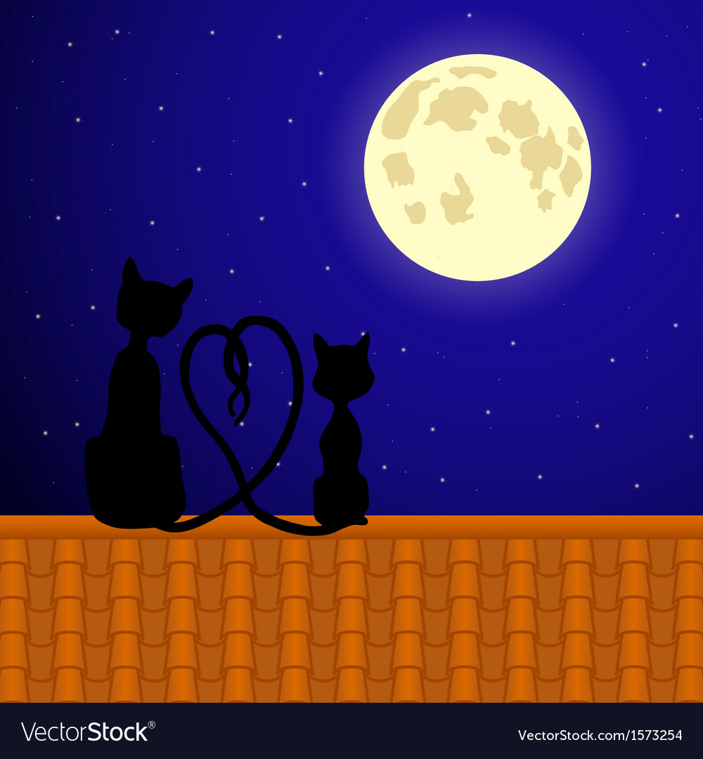 Cats sitting on the roof and stare at moon vector