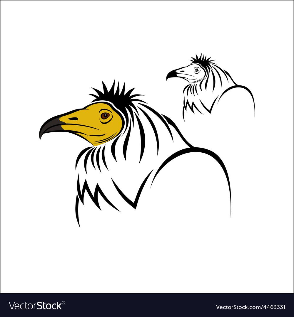 Egyptian vulture vector