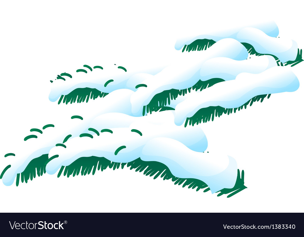 Icon snow on the leaf vector