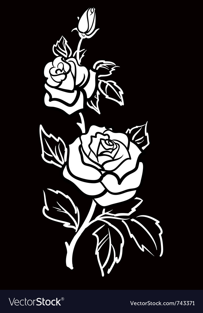 Graphic art of rose flower with leaves vector