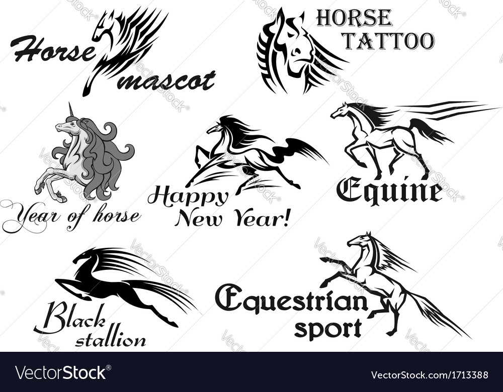 Fast stallions and mustangs vector