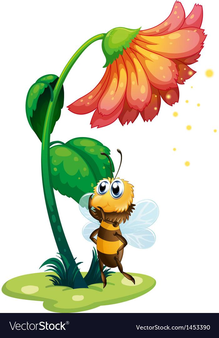 A bee standing under the big flower vector