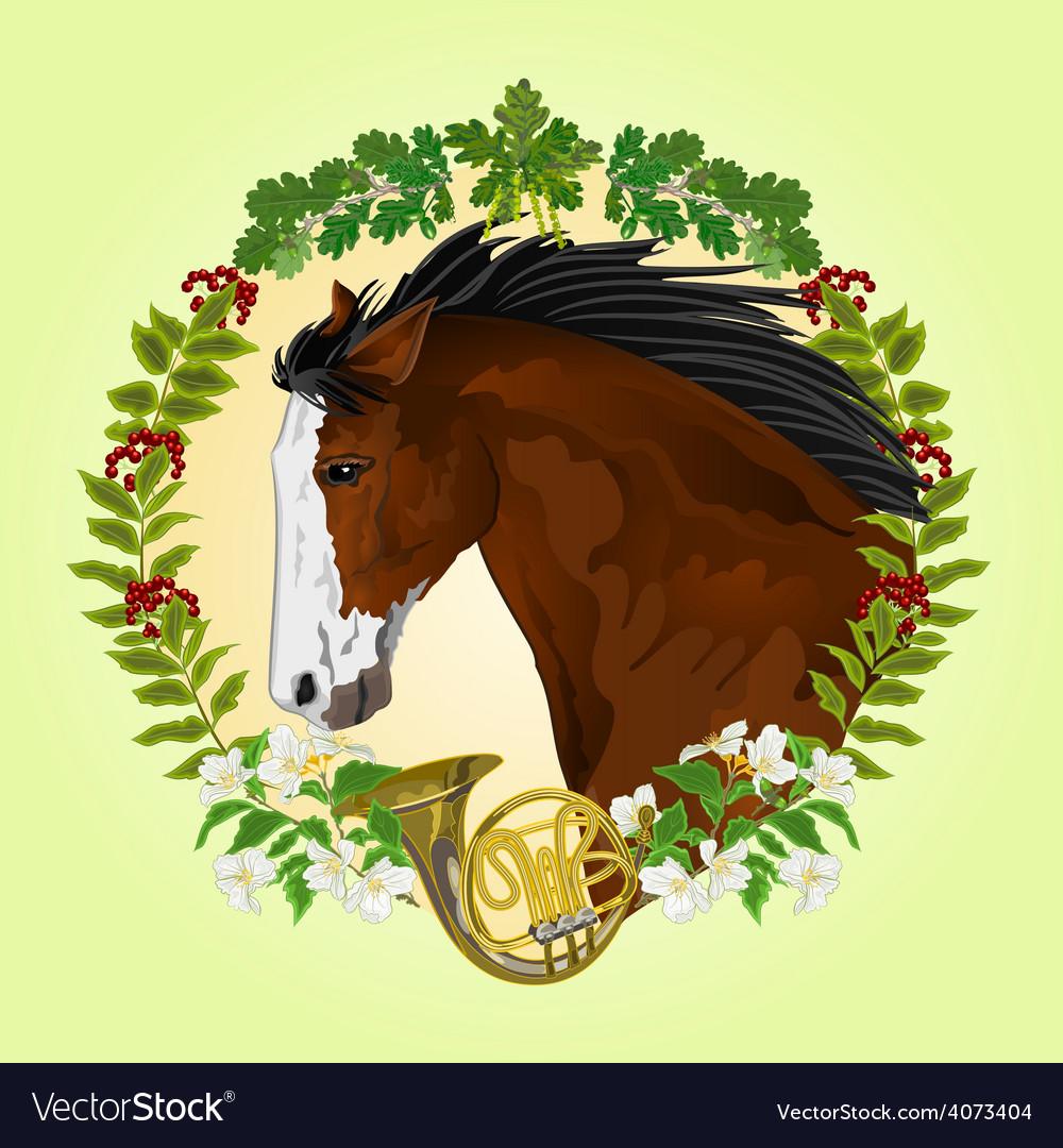 Dark brown horse head of stallion vector