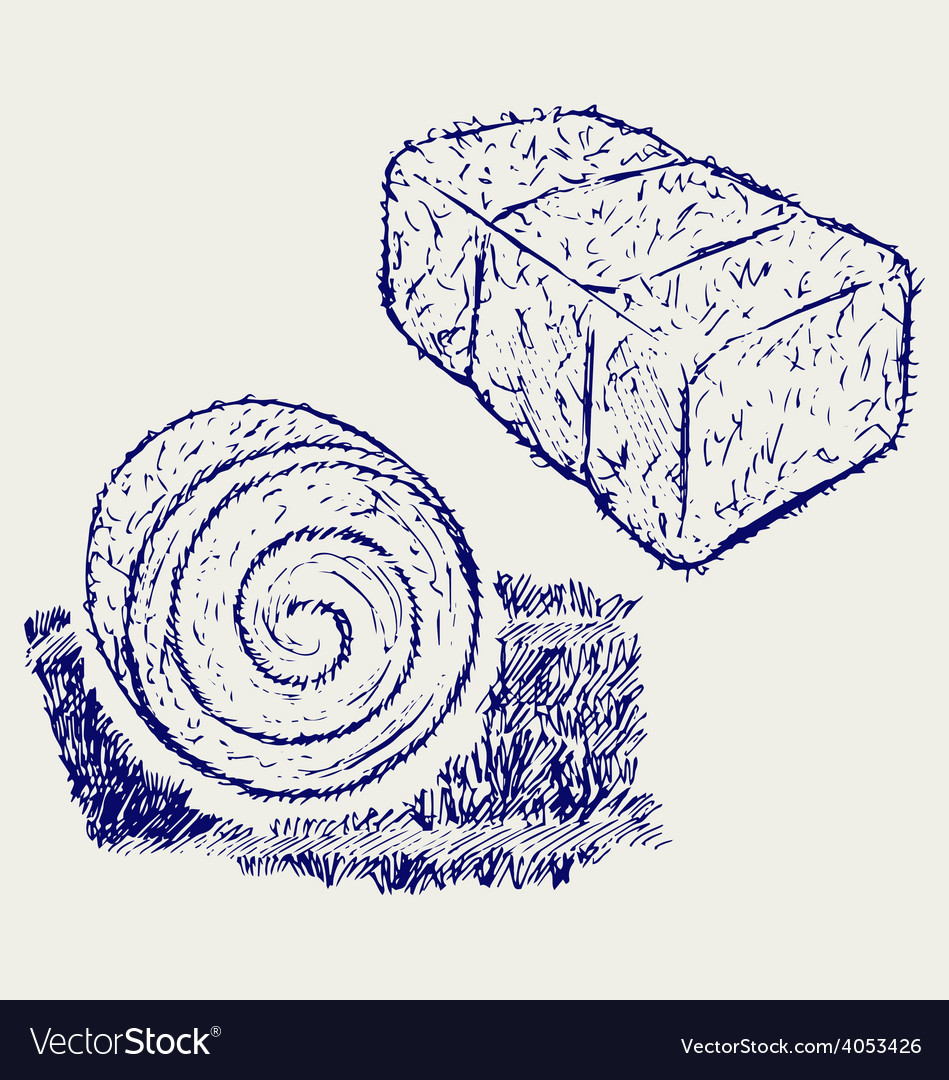 Bale of hay vector