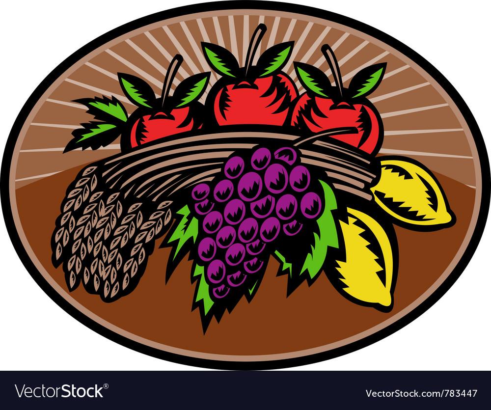 Fruit wheat harvest vector