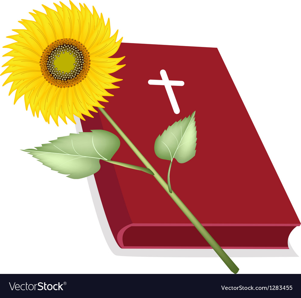 Holy bible with wooden cross and sunflower vector