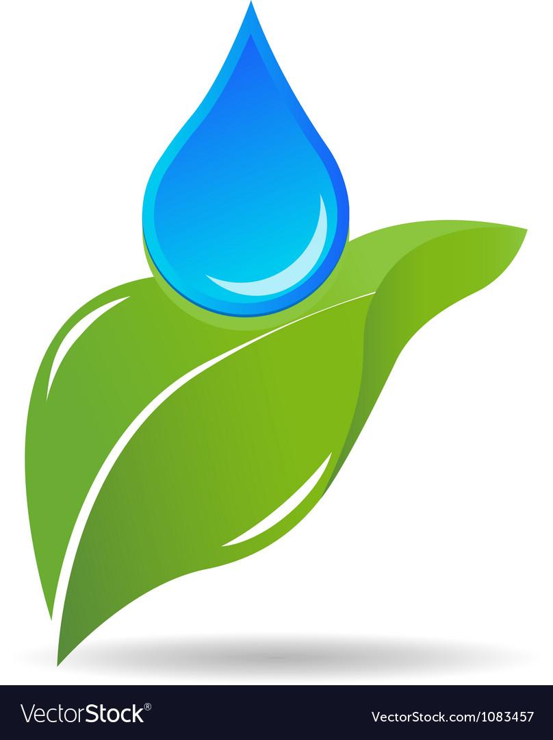 Water drop on leaf logo vector