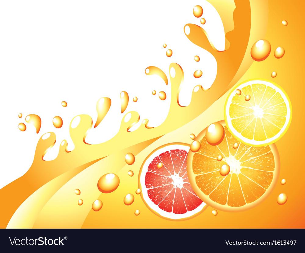 Citrus splash horizontal background vector