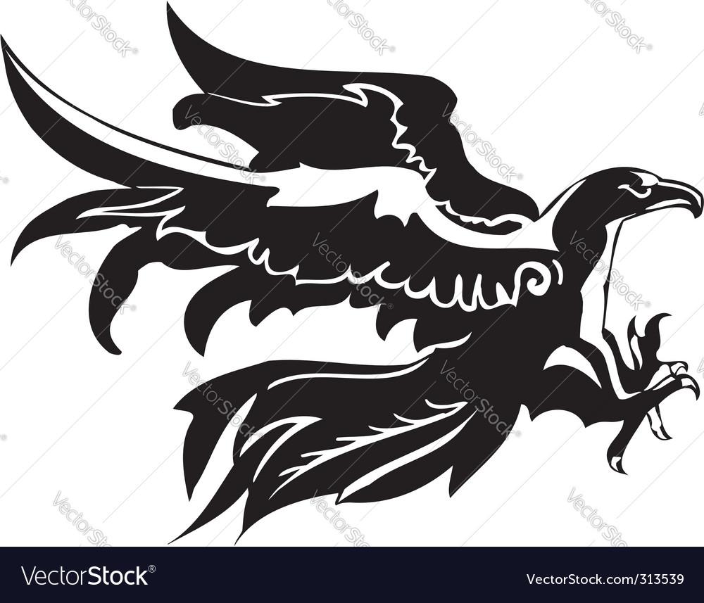 Eagle  predatory bird vector