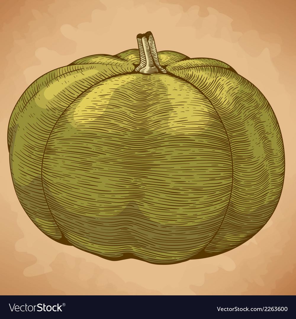 Engraving pumpkin retro vector