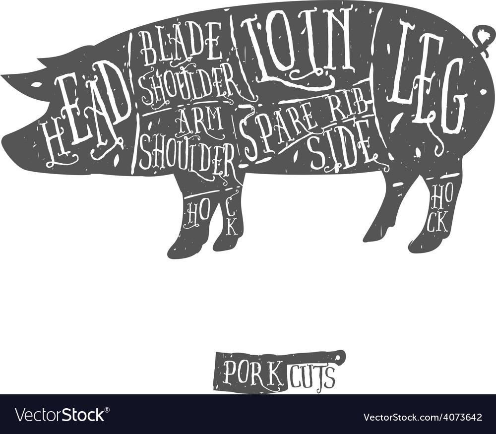 American cuts of pork scheme vector