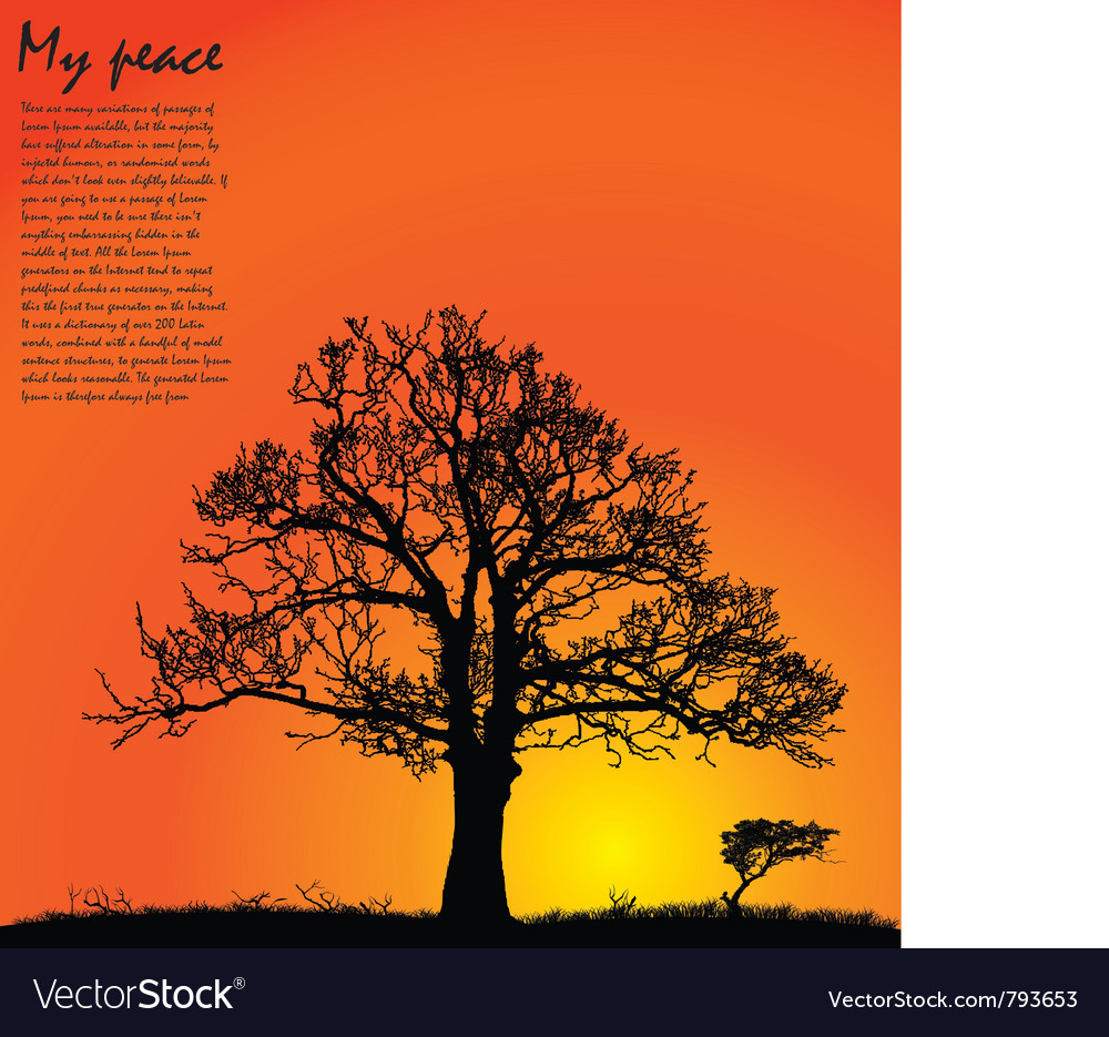 Tree sunset vector