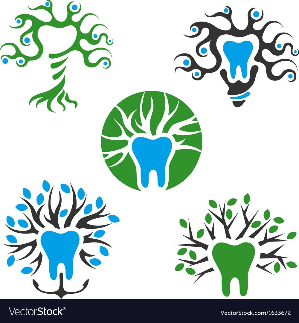Symbols of healthy tooth vector