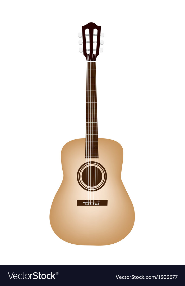 A beautiful classical guitar on white background vector