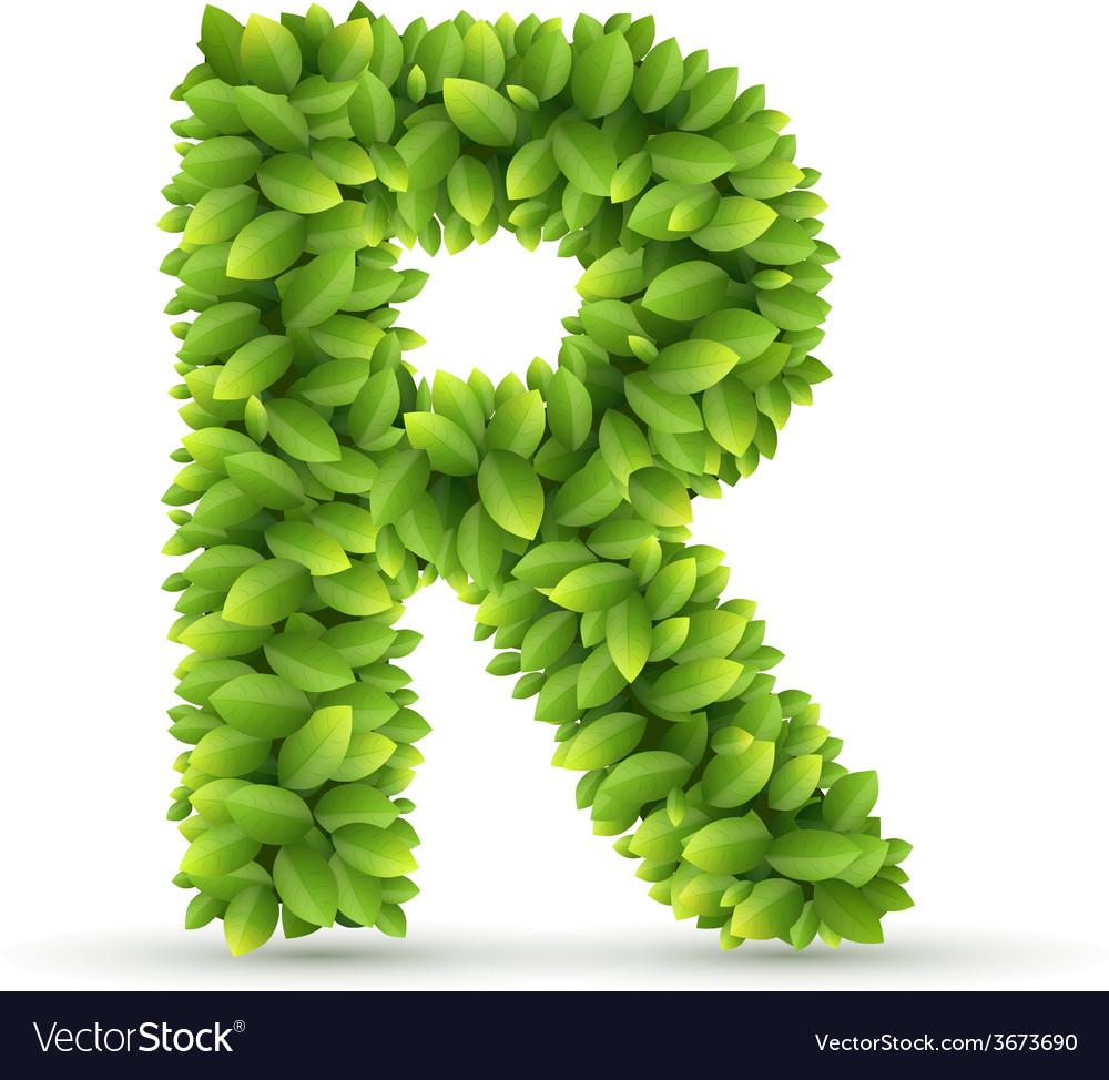 Letter r alphabet of green leaves vector