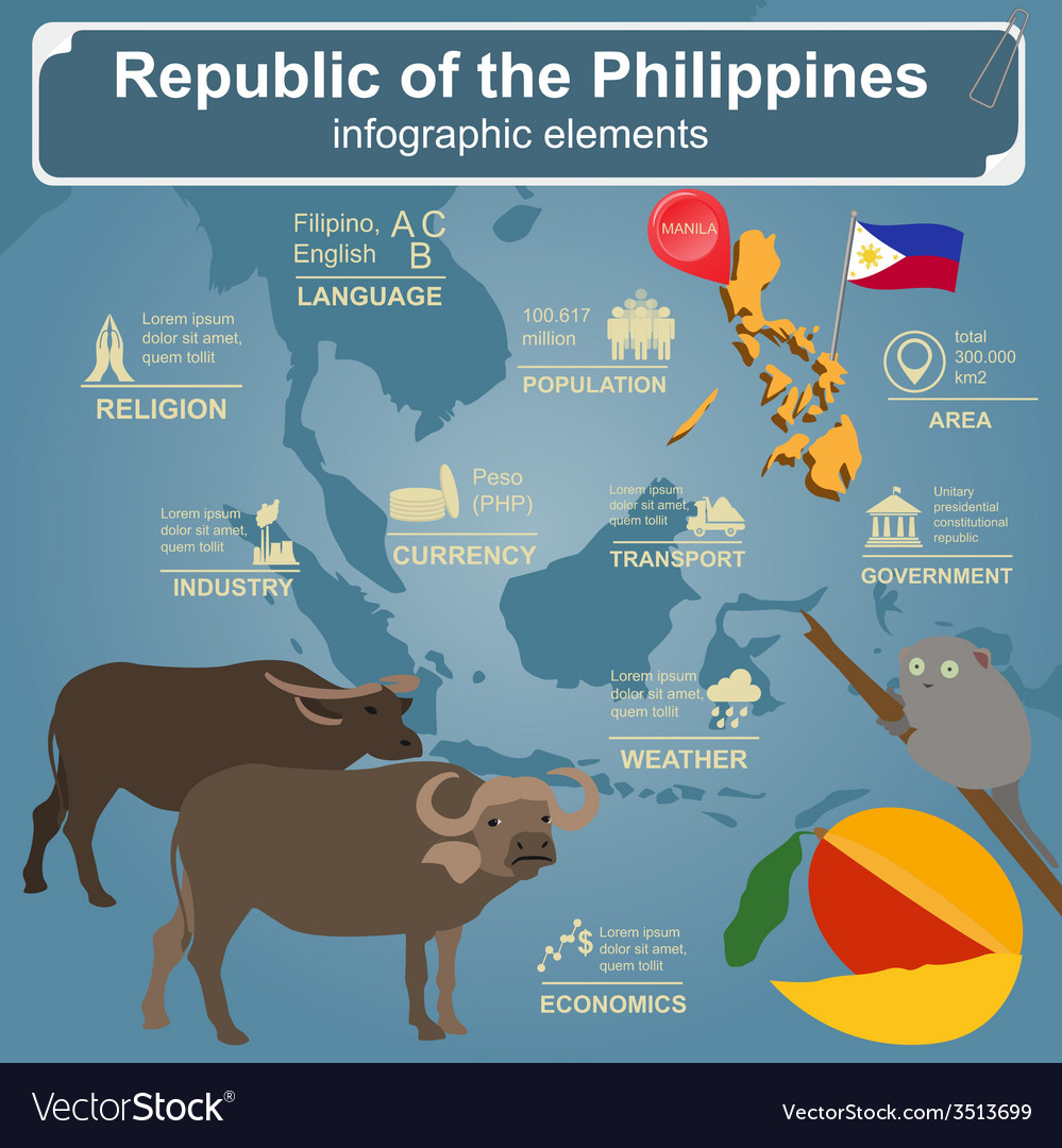 Philippines infographics statistical data sights vector