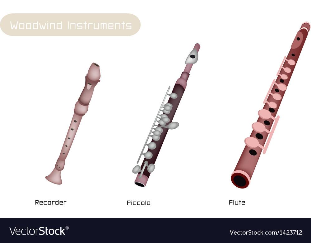 Three woodwind instrument vector
