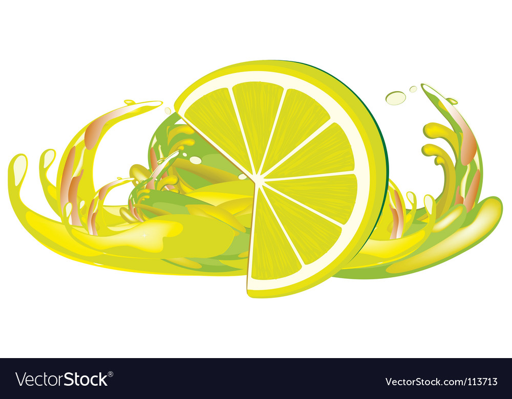 Juice splashes and lemon vector