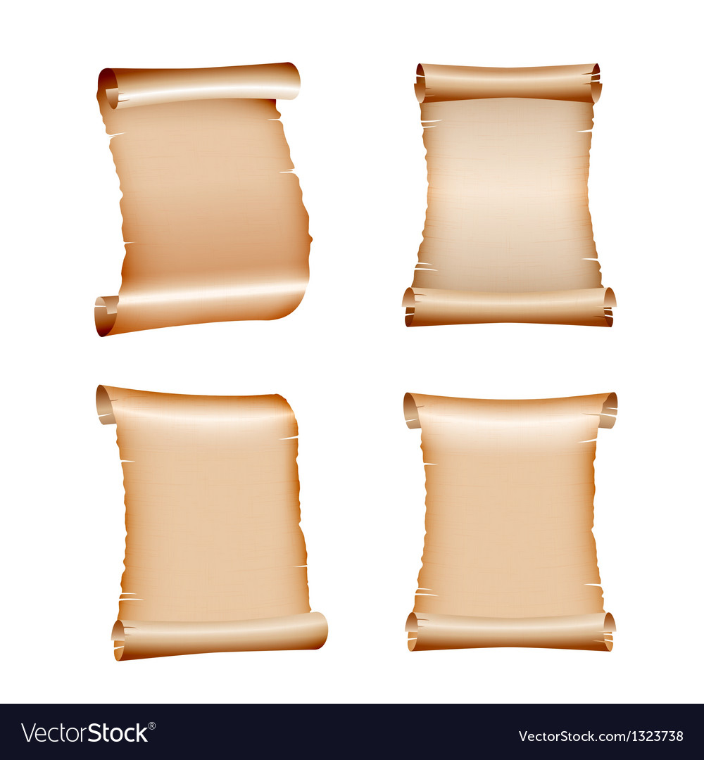 Set of old blank scrolls paper vector