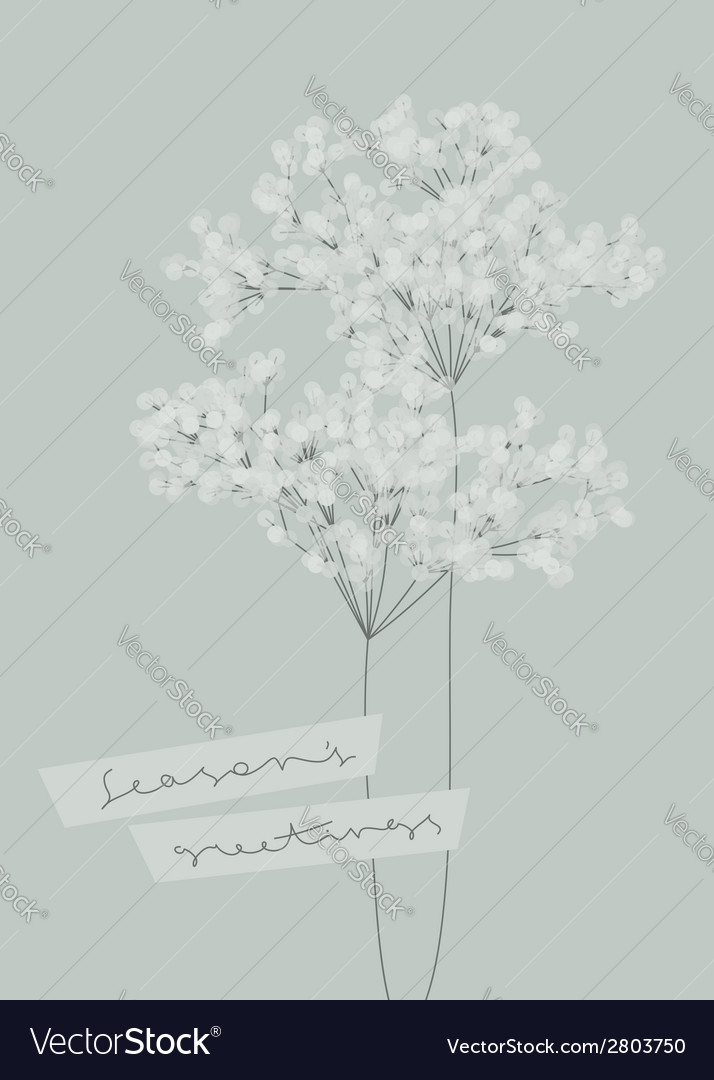 Snowy branches seasons greetings design vector
