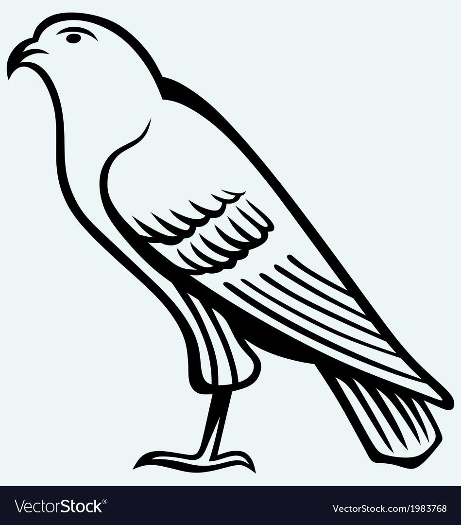 Eagle sketch vector