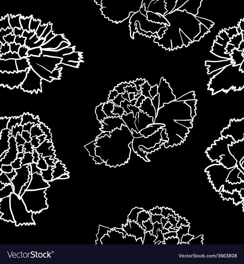 With carnation flower vector