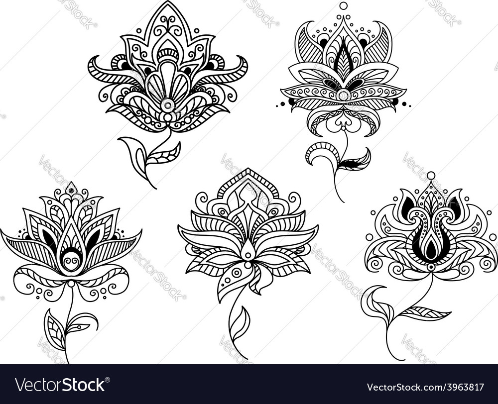 Outline paisley flowers and floral elements vector