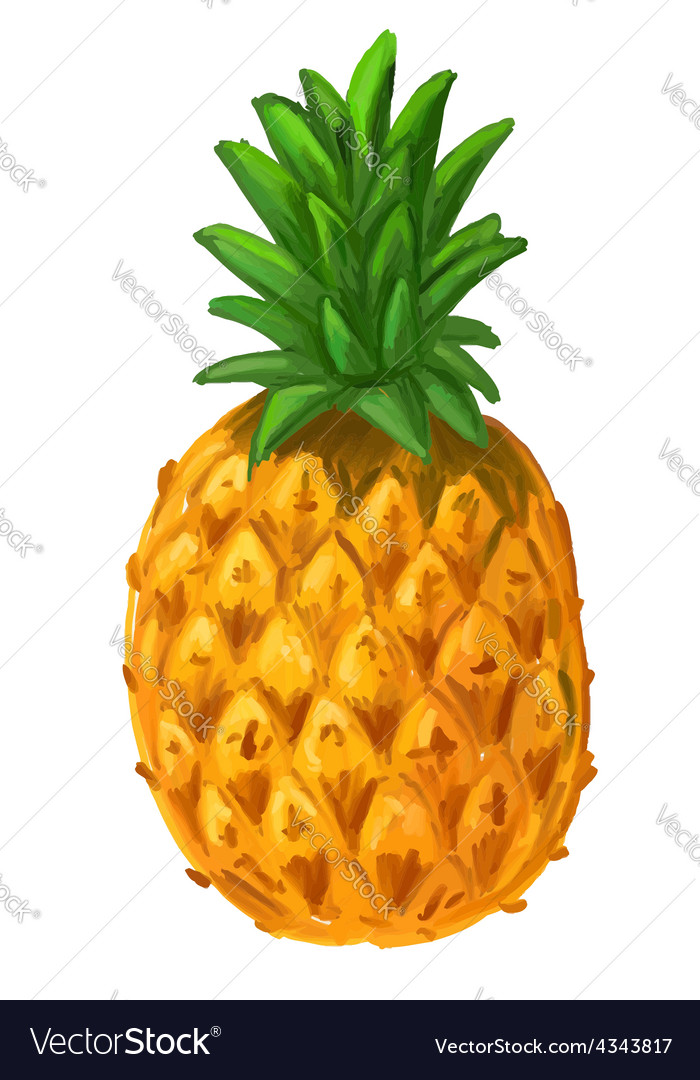 Picture of pineapple vector