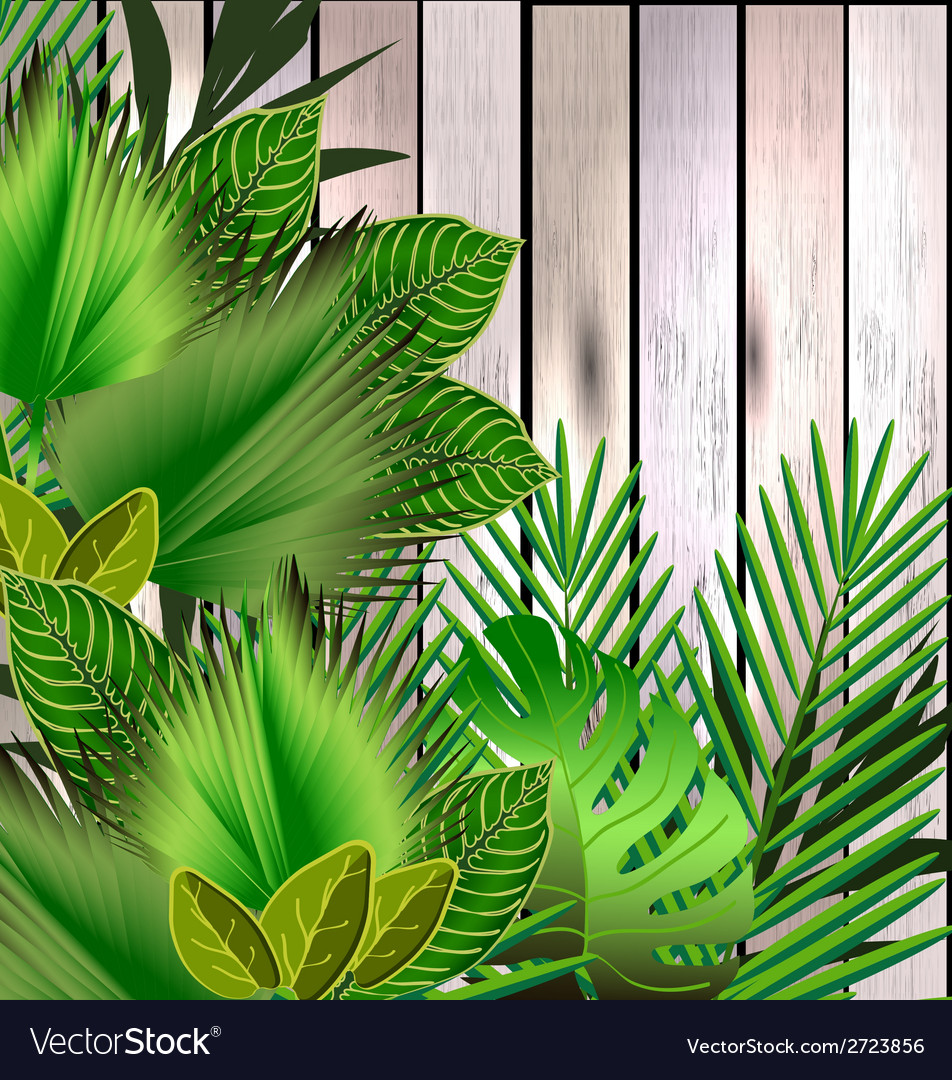 Tropical green leaves over wood vector