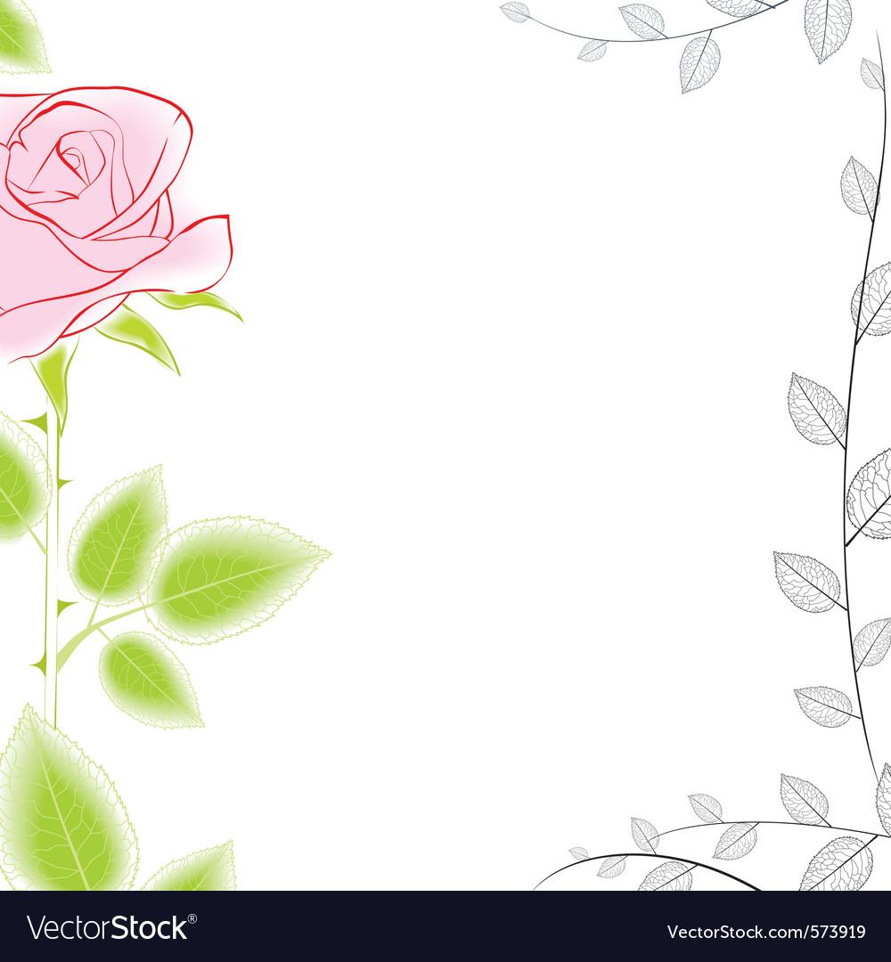 Rose border vector