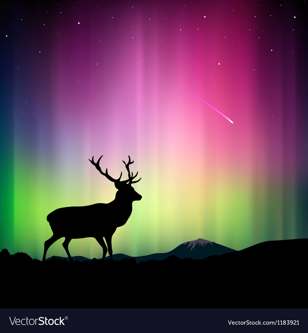 Northern lights with a deer in the foreground vector