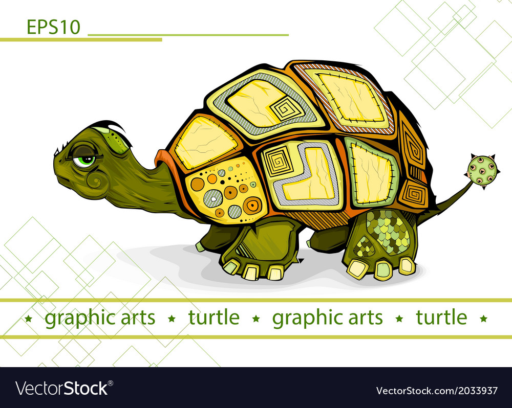 Turtle shell vector