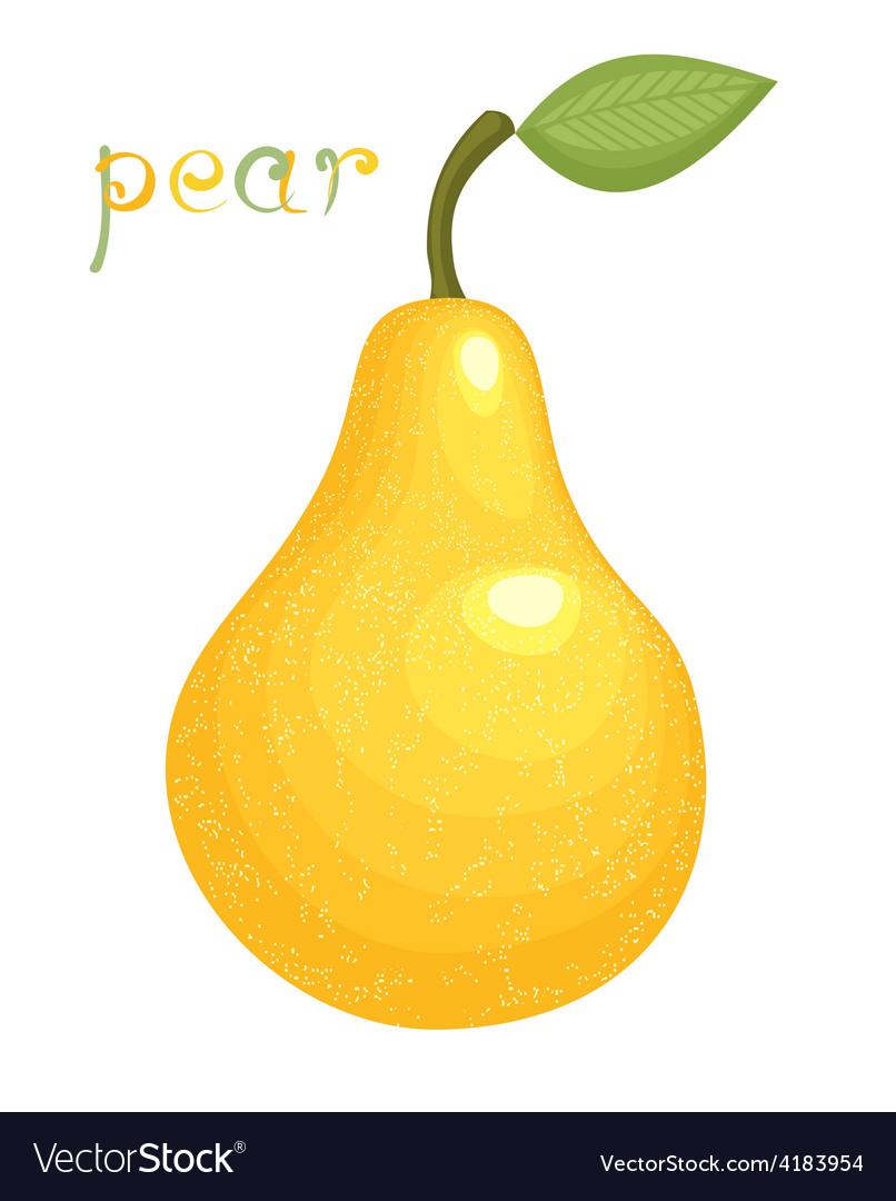 Ripe pear vector