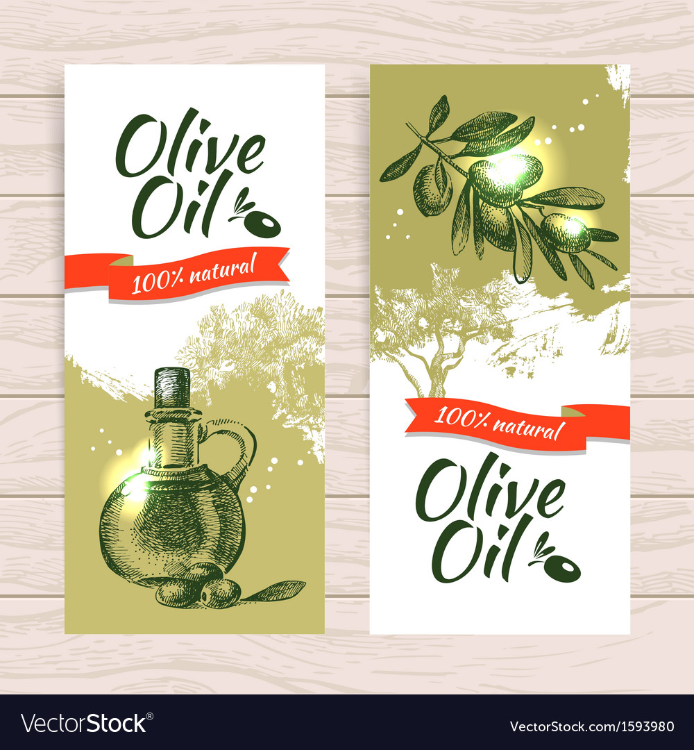 Banner set of vintage olive splash backgrounds vector