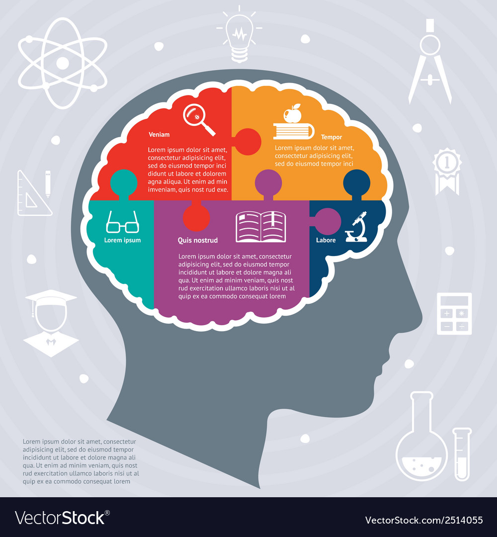 Education infographics concept vector