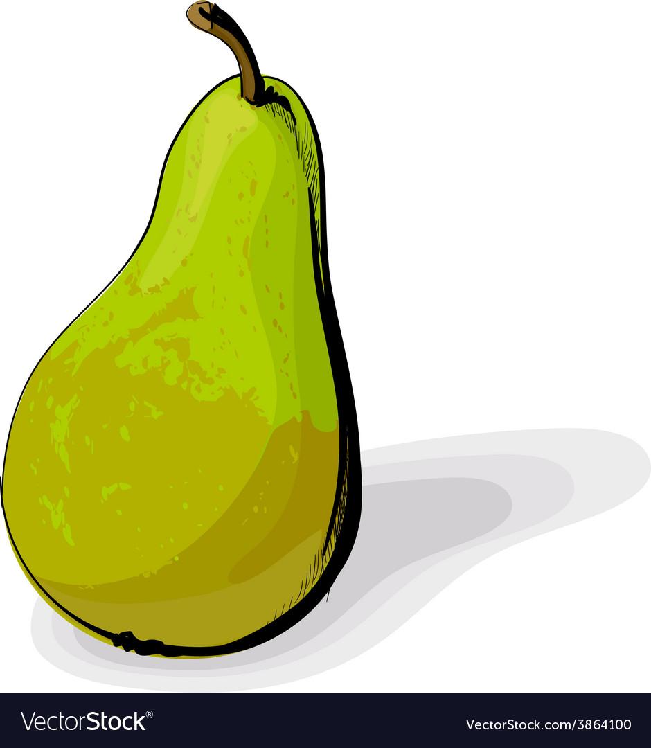 Green pear vector