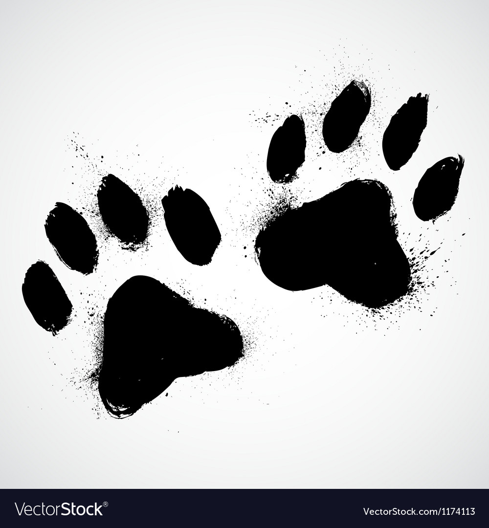 Grunge dog paws vector
