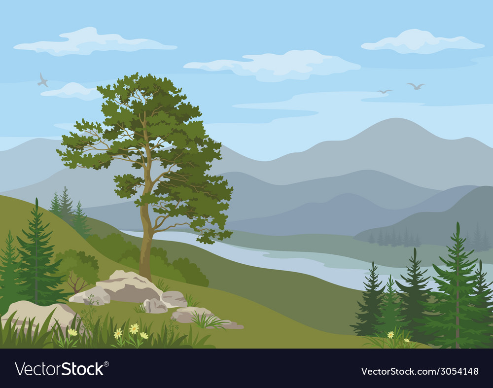 Mountain landscape with tree vector