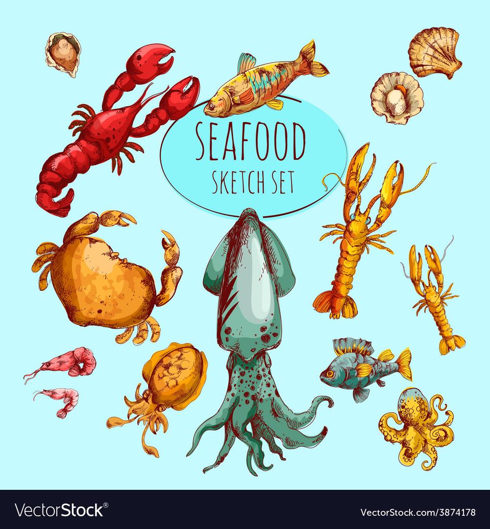 Seafood sketch colored vector