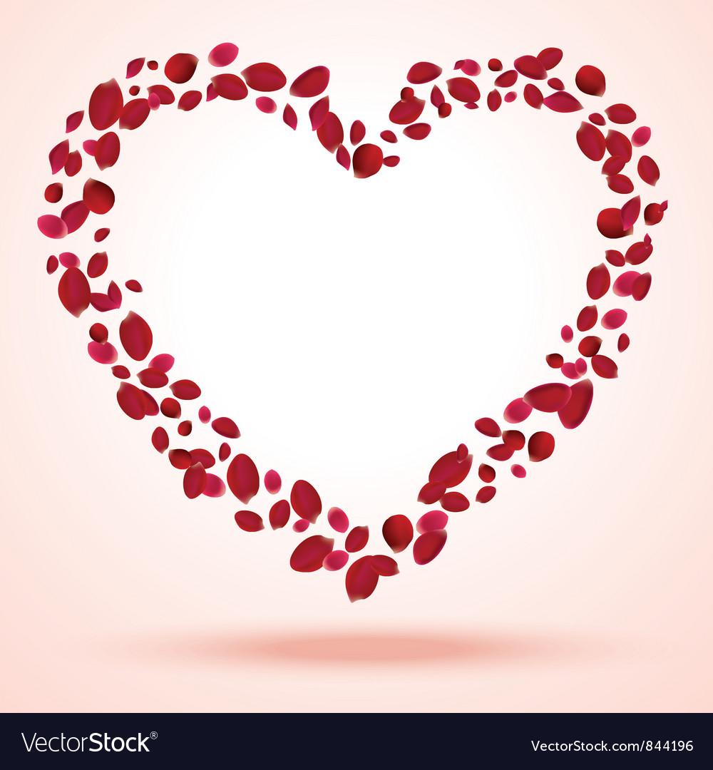 Rose petals heart vector