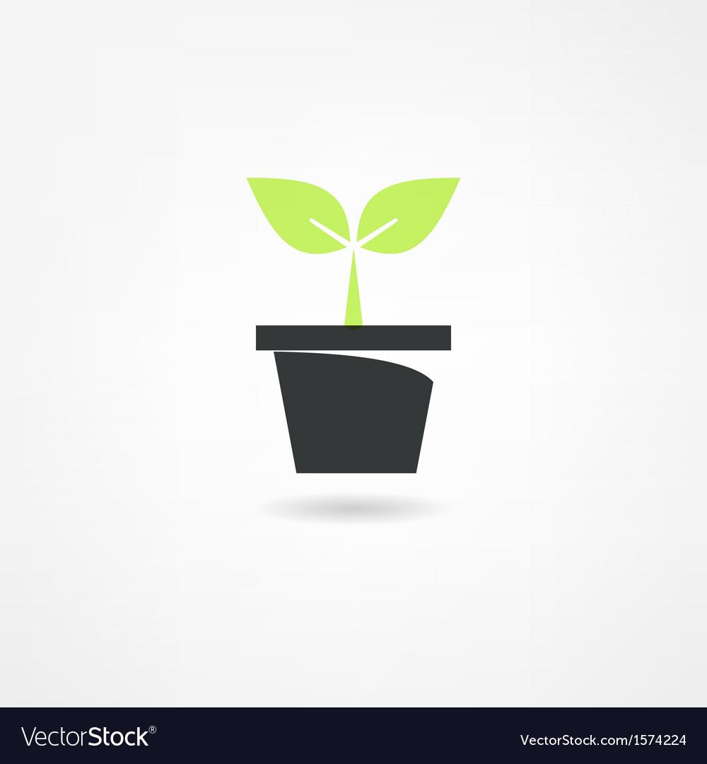 Plants icon vector