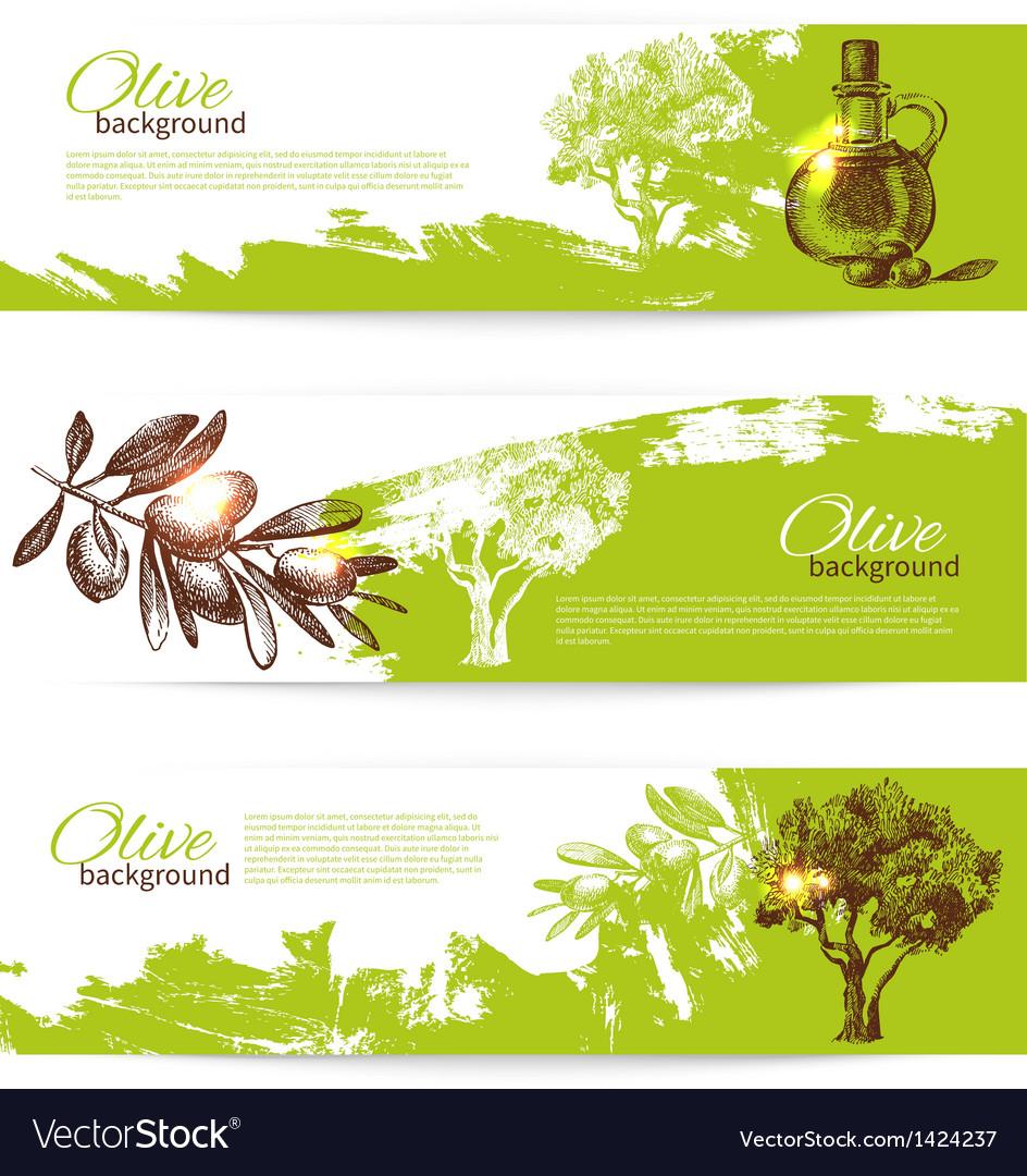 Banner set of vintage olive background vector