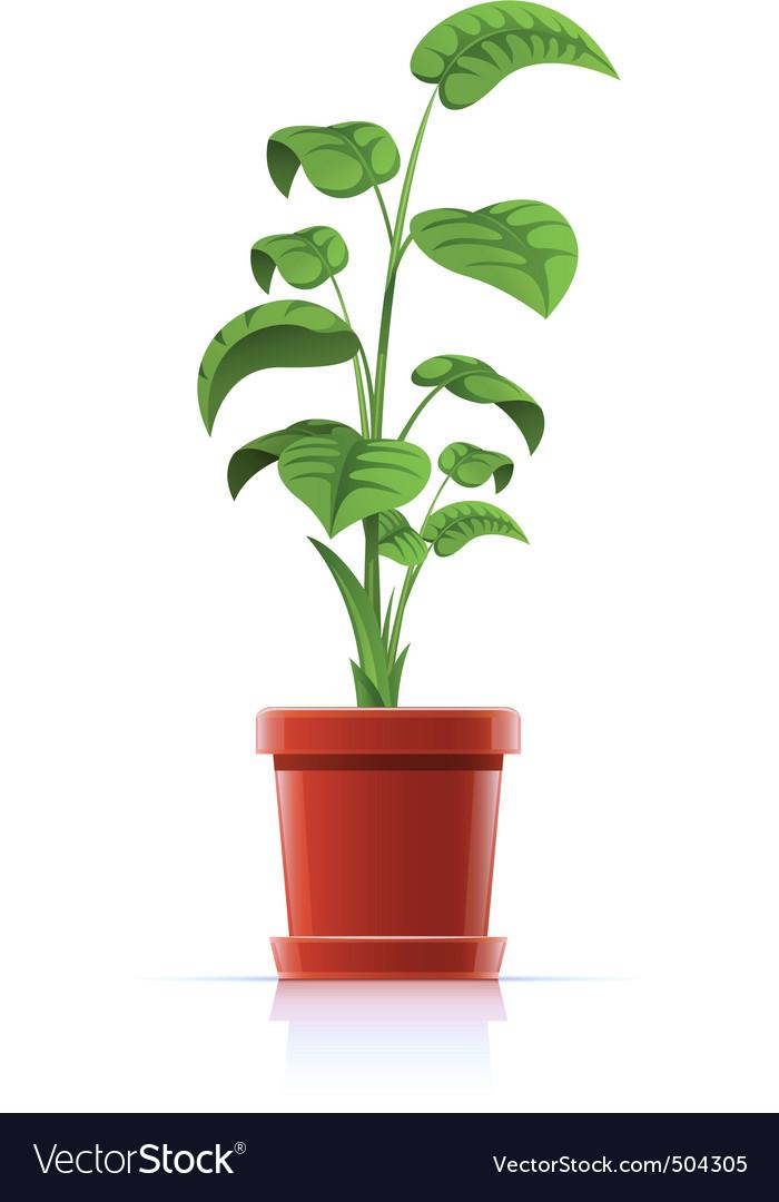 Plant in flowerpot vector