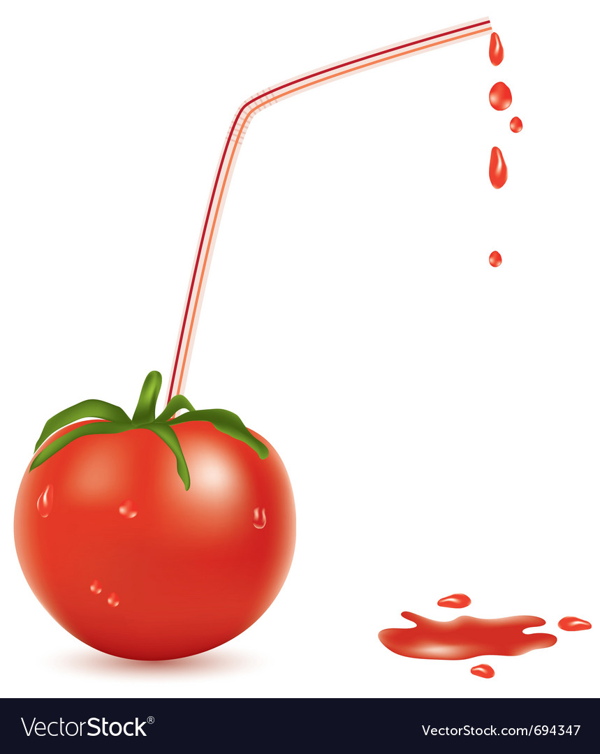 Wet tomato and straw vector