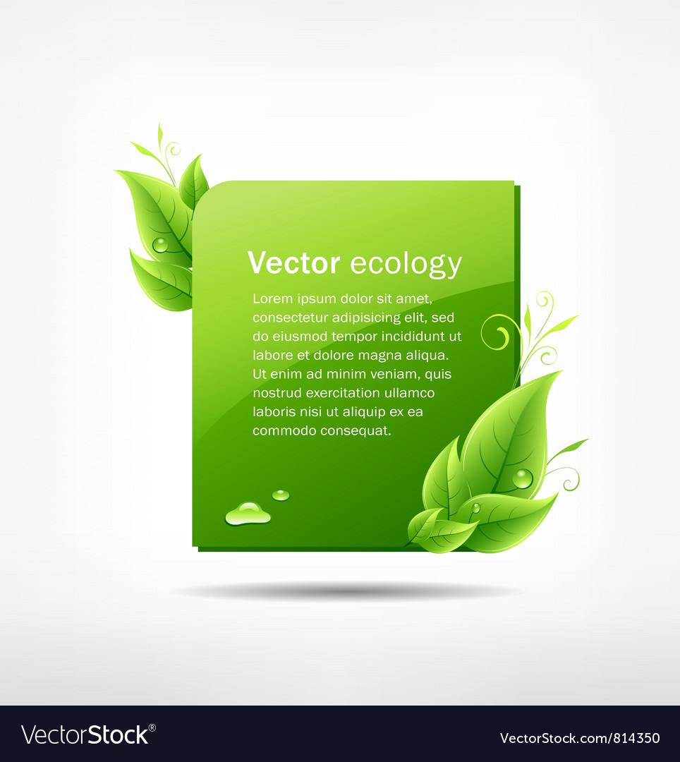 Frame green leaf ecology vector