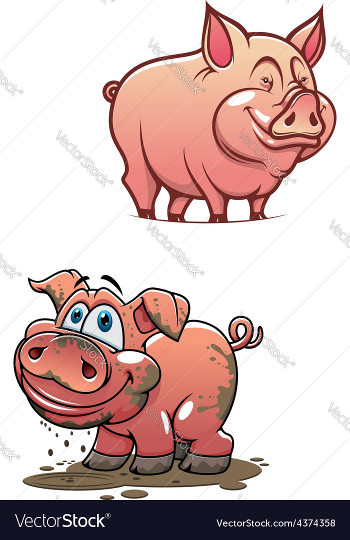 Cartoon dirty piggy and clean pink pig vector