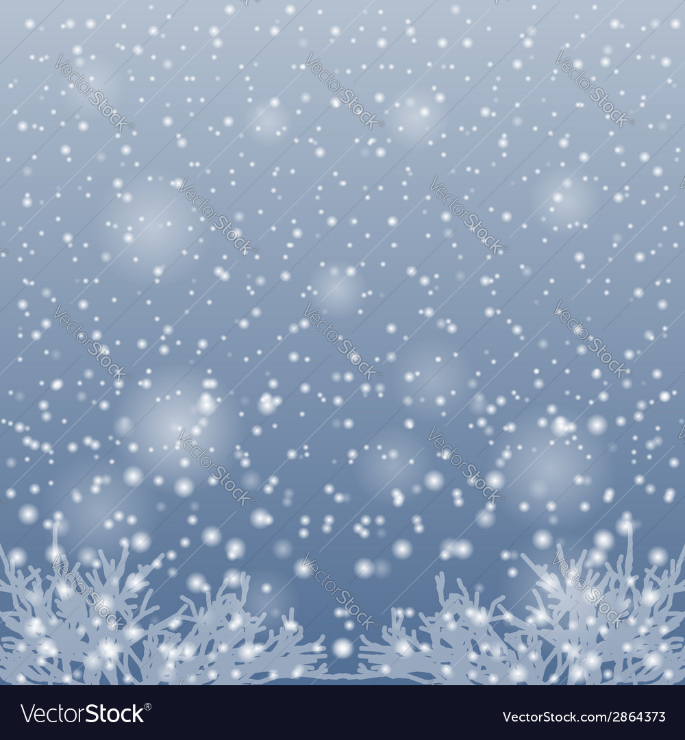 Snow falling on the branches of trees vector