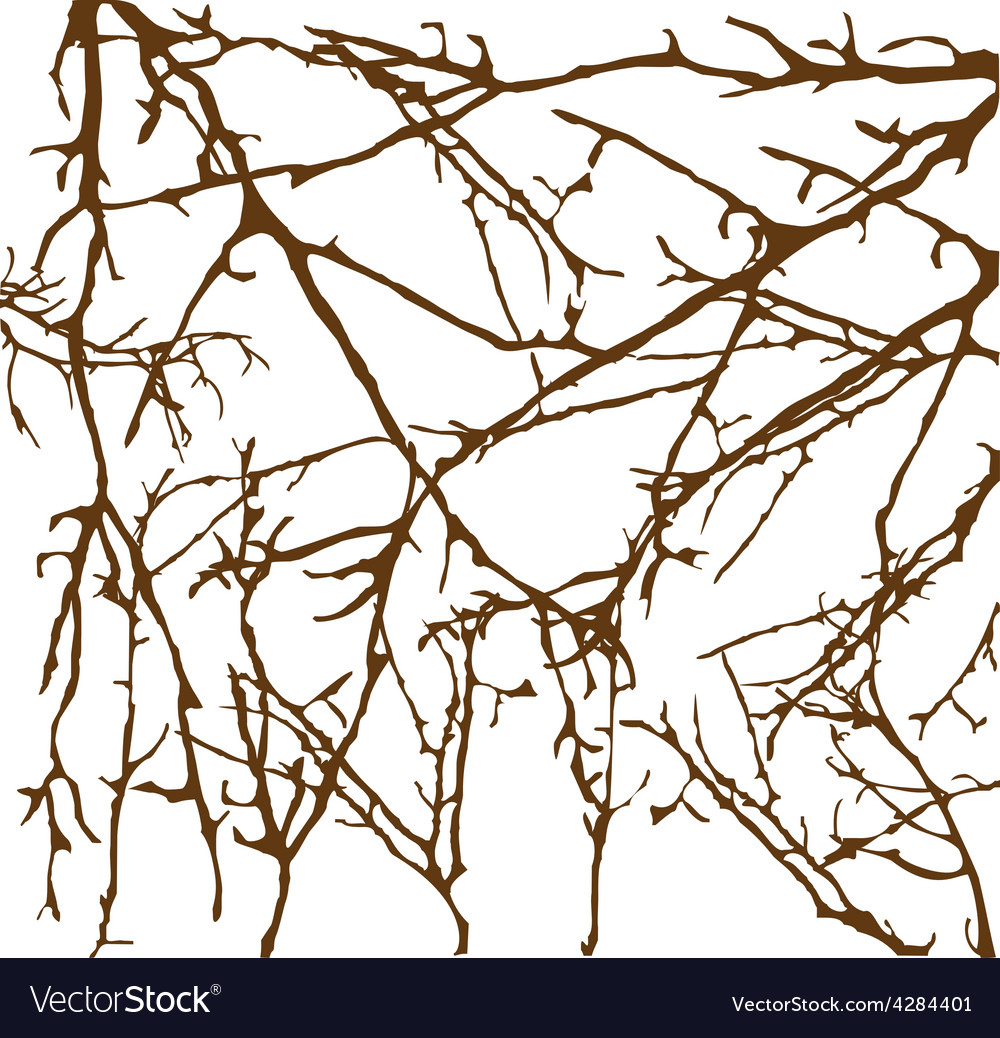 Branches brown vector